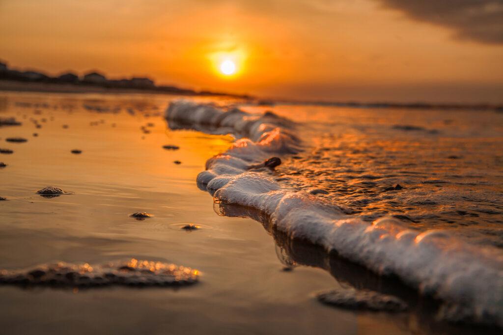 Golden-Wave-by-Dwayne-Schmidt