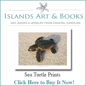 Islands Art and Book Store Sea-Turtle-Prints1