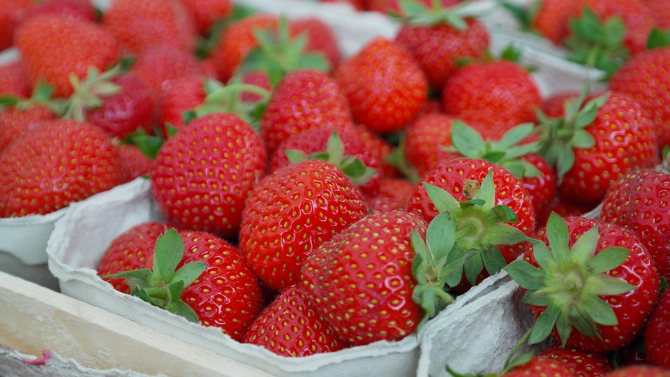 North Carolina Strawberry Season and Recipes