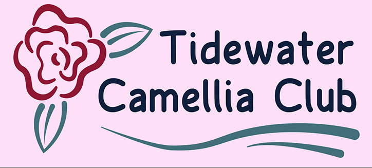 Tidewater Camellia Club Show and Sale