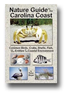 Purchase The Nature Guide to the Carolina Coast in our online store here!