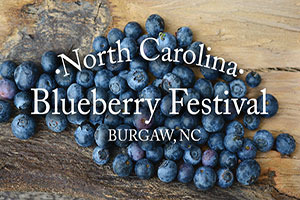 NC Blueberry Festival