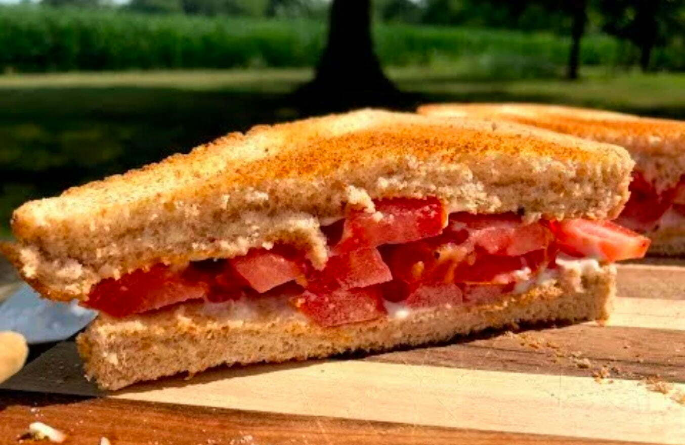 Ultimate-Tomato-Sandwich